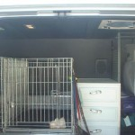 Peggys Dog Transport 150x150 Dog Transport and Grooming Vehicles