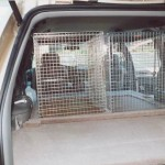 Dog Transport Minivan 4c