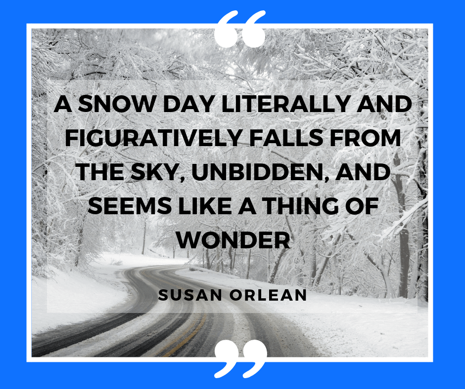 Winter quotation by Susan Orlean